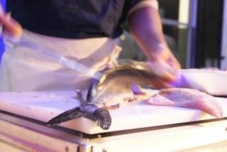 atelier-de-decoupe-de-poisson-83951